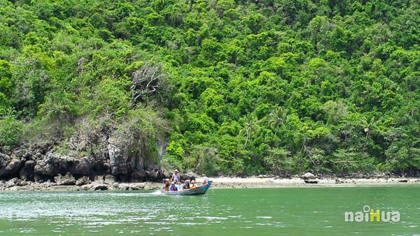 เกาะเวียง