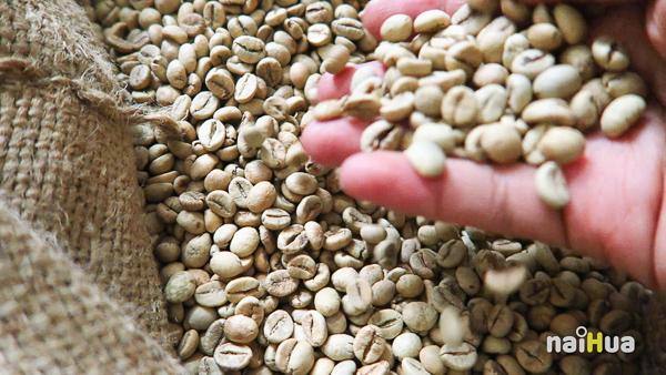 กาแฟถ้ำสิงห์